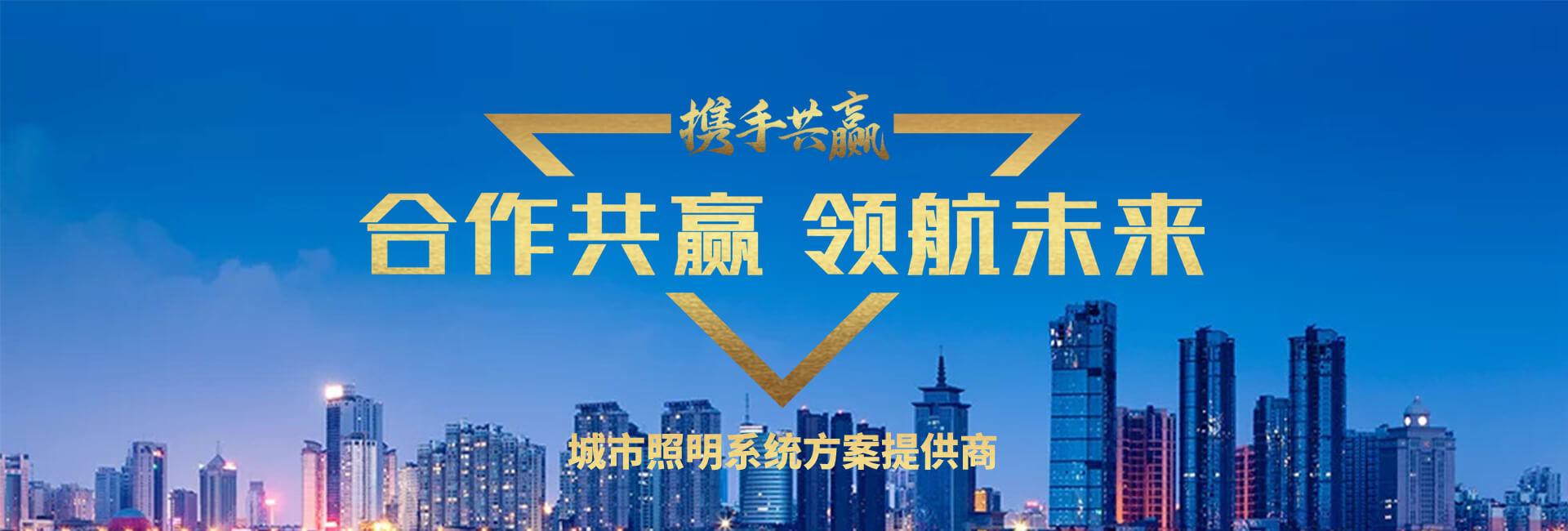 广安邻水王家镇太阳能路灯案例
